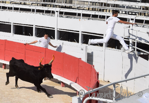 man jumping from bull